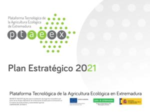 Ptaeex Plan Estratégico 2021