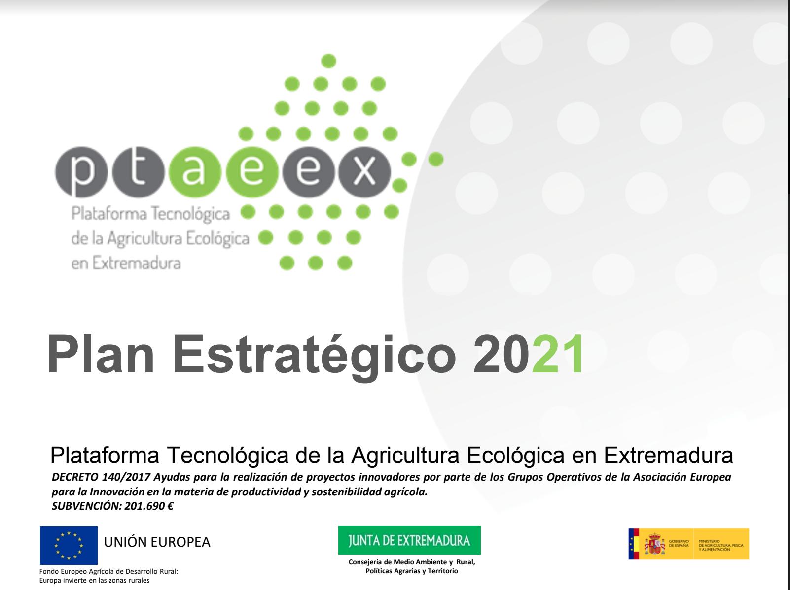 Plan Estratégico Ptaeex 2021